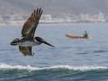 2014-03-15_094739_Malibu_Lagoon_39_IMG_0436_HeidiPodjavorsek.jpg